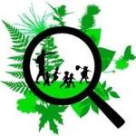 Nature explorer clip art